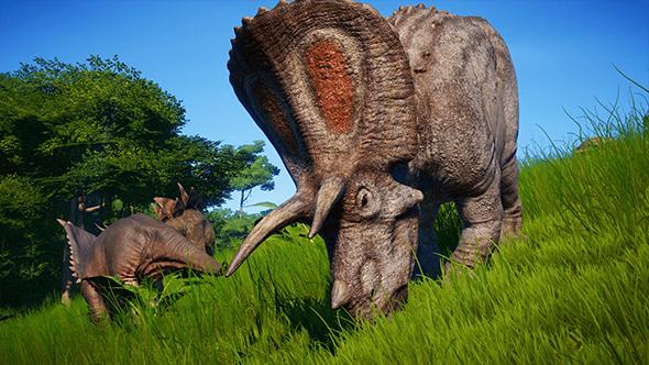 prey for herbivores