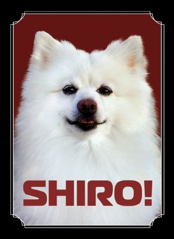 Kibler Shiro