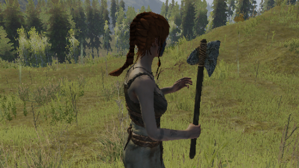 6 things I learnt about Life is Feudal: MMO by playing it