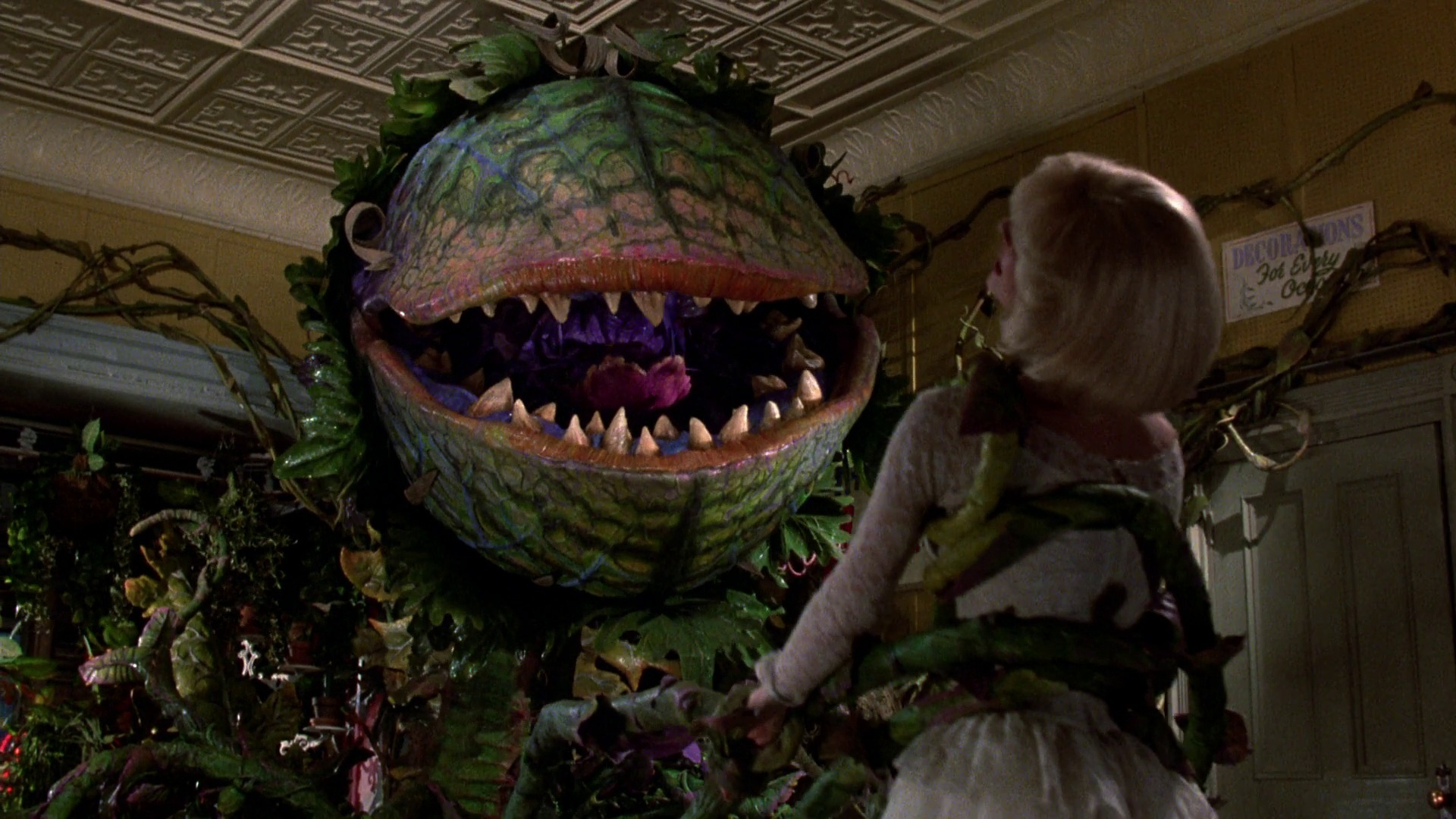 seed all seeing eye little shop of horrors