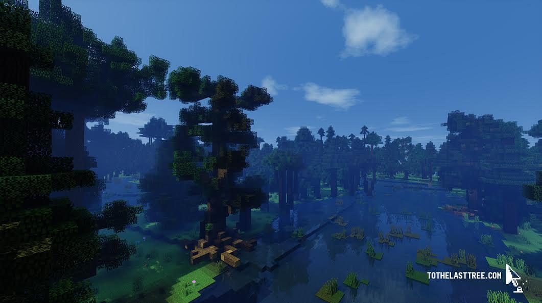 Minecraft forest