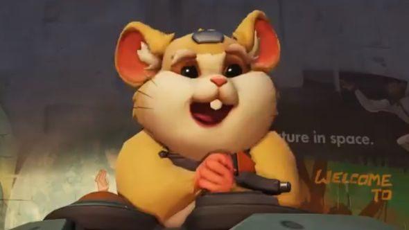 Overwatch hamster