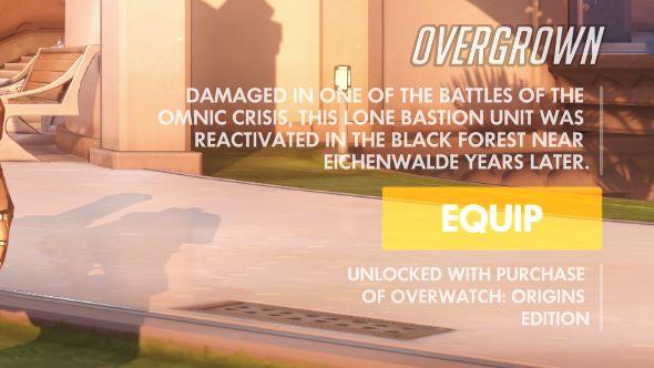 Overwatch patch 1.10 skin description