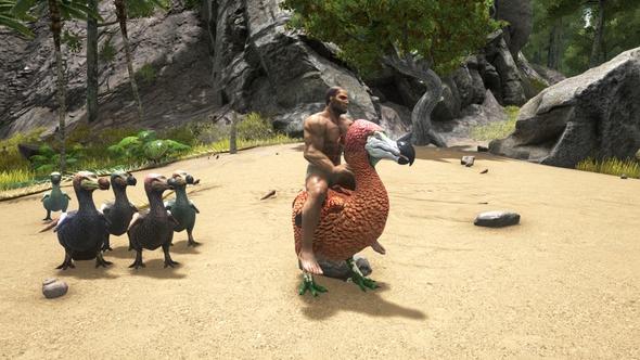 rideable dodos best ark mods