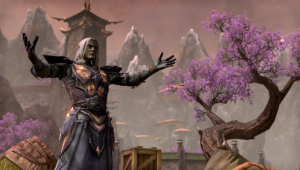 The best videos from Elder Scrolls Online
