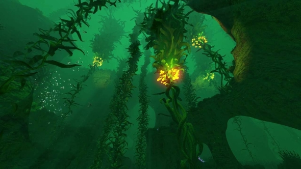 subnautica map kelp forest