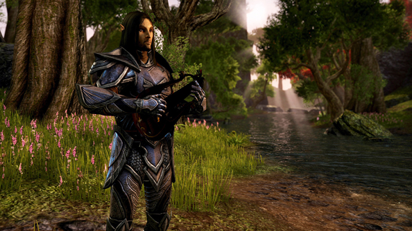Progression will not end at level 50, Zenimax Online have said.